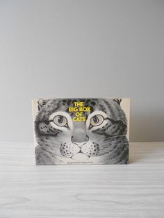 the big box of cats