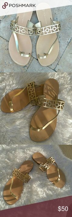 Trina Turk Gold Roman Flats Genuine Leather Trina Turk gold Roman Sandals. Super comfy flats for all occasions. Never worn. Made in Brazil. Shoes Sandals