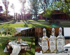 Hotel Hacienda El Carmen, com um pôr-do-sol delicioso! O gramado é um sonho para realizar casamentos