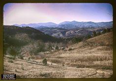 A mountain farm along the Skyline Drive in Virginia, photo by-Jack Delano, c1940  #historicpictoric #photorestoration #oldisgold #history #historicphotos