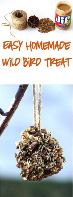 Easy Crafts for Kids!  These DIY Wild Bird Treats are SO simple to make, and such a fun craft for children!  Check out the easy step-by-step instructions, and make one in just a few minutes!