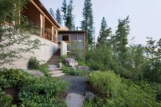 Andersson-Wise creates Montana cabin with wood walls and green roof