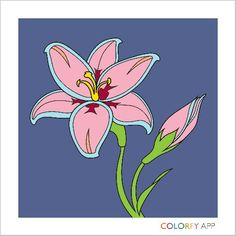 The brown kind of Brylie-purple Coloring Book App, Adult Coloring, Coloring Pages, Amazing Flowers, Beautiful Flowers, Colorfy App, Arts And Crafts, Diy Crafts, Flower Power