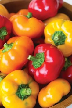 Year of the Sweet Pepper - Hungarian Cheese Hybrid peppers hang like cute little ornaments on top of the full, 18 to 24 inch plants. Home Grown Vegetables, Growing Veggies, Fruits And Veggies, Fruit Garden, Edible Garden, Vegetable Garden, Garden Plants, Canning Peppers, Burpee Seeds