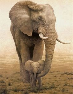 Animal Poster/Mother Elephant&Baby Illustration/Africa/Mother and Baby Elephants Tierplakat / Mutter Elefant & Baby Illustration / Afrika / Mutter und Baby Elefanten Mother And Baby Elephant, Elephant Love, Mama Elephant, Elephant Family, Mother And Baby Animals, Elephant Poster, Elephant Theme, Elephant Print, Elephant Meaning