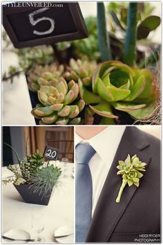 "Sophistication with Succulents | Green Bride Guide. ""Succulents store moisture in their thick leaves. They can live for months without being watered and they last for many days detached from their roots. As such, they are the perfect plants for wreaths, garlands, bouquets, and wedding sculptures!"""