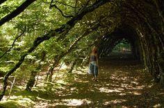 Jardins du Manoir du Cruguil, Bretagne.