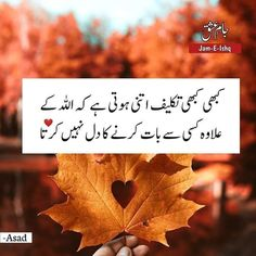 Beautiful Quotes About Allah, Quran Quotes Love, Quran Quotes Inspirational, Islamic Love Quotes, Religious Quotes, Urdu Quotes, Qoutes, Ego Quotes, True Feelings Quotes