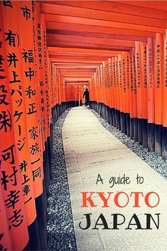 A travel guide to the best of Kyoto, Japan. the real japan, real japan, resources, tips, tricks, inspiration, idea, guide, japan, japanese, explore, adventure, tour, trip, product, tool, map, information, tourist, plan, planning, tools, kit, products http://www.therealjapan.com/subscribe #travelguide