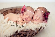 newborn+twin+girl+photography | twin baby photographer ss2