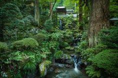 Daiyuzan Saijoji Temple, Minami-Ashigara, Kanagawa, Japan If you are a nature lover living in Tokyo, check out our Outdoor Day Trips from Tokyo. Moss Temple, Day Trips From Tokyo, Lush Green, Places, Nature, Outdoor, Image, Japanese Gardens, Kyoto Japan