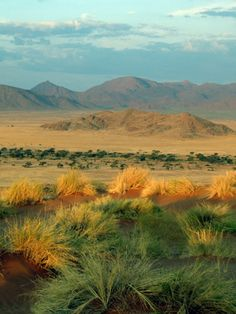 Namibia Nature