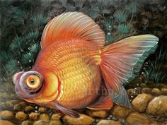 Famous Realism Art | art decoration cheap country decorations High quality Goldfish Realism ...