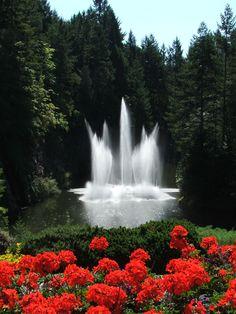 Buschart Gardens - Absolutely beautiful place!!