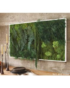 Real moss and ferns are used to create this wall art that is truly one of a kind. Get it here: http://www.bhg.com/shop/viva-terra-fern-and-moss-wall-art-p50b863e7e4b0160d46ad65cf.html