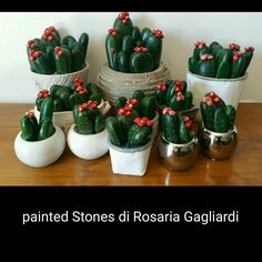 Cactus in fiore