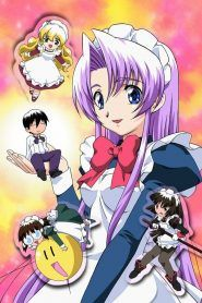 Hanaukyo Maid Tai Com Imagens Animes Completos