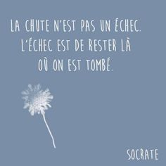 """The fall is not a failure. The failure is to stay where we fell"" Socrate The Words, Cool Words, Positive Mind, Positive Attitude, Positive Quotes, French Words, French Quotes, Words Quotes, Life Quotes"