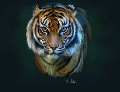 Tiger Painting!
