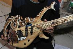 Snake Bass Guitar