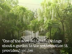 Garden anticipation. #Gardeningquote