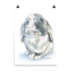 Lop Rabbit Watercolor