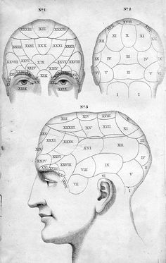 from Johann G. Spurzheim's Outlines of Phrenology, or Of the Philosophy of Man, 1822