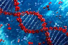 assist in Bio Chem Research paper by rushdaafgan