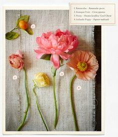 Kumquat, *ranunculus, peony, *icelandic poppy Wedding Flowers Guide – Types & Ideas | B-Inspired | BHLDN
