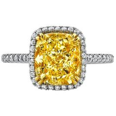 Double Prong Halo Engagement Ring for Fancy Yellow Diamond ($25,640) ❤ liked on Polyvore featuring jewelry, rings, pave band ring, pave ring, yellow diamond rings, cushion cut cocktail ring and cushion cut engagement rings