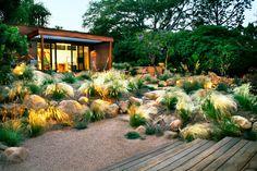 Image result for natural vegetation gardens south africa