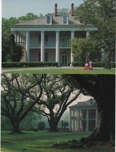 Old Southern Homes, Southern Plantation Homes, Plantation Style Homes, Plantation Houses, Southern Mansions, Southern House Plans, Southern Gothic, Big Beautiful Houses, Beautiful Homes