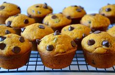 Celebrate the fall season with a quick and easy recipe for super-moist pumpkin muffins studded with chocolate chips.