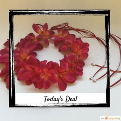 Today Only! 20% OFF this item.  Follow us on Pinterest to be the first to see our exciting Daily Deals. Today's Product: Hawaiian hot pink plumeria headband halo crown wedding teen hippie Buy now: https://www.etsy.com/listing/449333962?utm_source=Pinterest&utm_medium=Orangetwig_Marketing&utm_campaign=Fall%20sale   #etsy #etsyseller #etsyshop #etsylove #etsyfinds #etsygifts #musthave #loveit #instacool #shop #shopping #onlineshopping #instashop #instagood #instafollow #photooftheday…