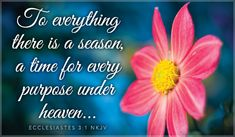 Free Ecclesiastes 3:1 eCard - eMail Free Personalized Scripture Cards Online
