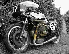 mcmillan moto guzzi racer
