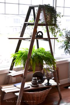 Spring decorating with plants and a ladder plant shelf / FunkyJunkInteriors.net  bHome.us