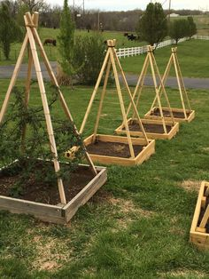 DIY GARDEN PROJECT: BERRY TEE-PEE - LITTLE MISSOURI HOMESTEAD