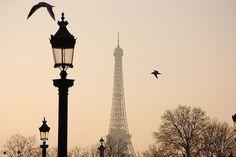 Paris Inspiration ~ fashion in my eyes