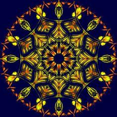 persévérance ;;; perseverança ;;;; perseverance !!!! continuité, tenacité, douceur dans la suite des idées et des intentions ... Mandala de Pierre Vermersch Digital Drawings
