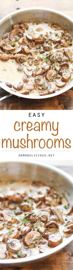 Easy Creamy Mushrooms Recipe - The easiest, creamiest mushrooms you will ever have - it's so good, you'll want to skip the main dish and make this a meal instead!