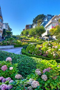Lombard St, on my running route.  (Hill work!)