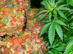 Using marijuana or marijuana butter to make fruity pebble rice krispie treats is very easy, tastes great and gets you very stoned. I prefer to use fruity pebbles to make my krispie squares as they taste much better and can help mask the weed flavor that potent butter recipes have.