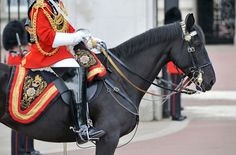 Changing of the Guard | 50 Free Things to Do in London