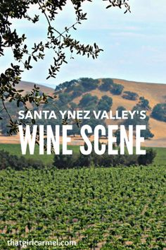 Exploring Santa Ynez Valley, one of California's prime wine regions