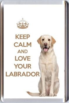 Google Image Result for http://www.supercookshop.co.uk/ekmps/shops/supercook/images/keep-calm-and-love-your-labrador-with-an-image-of-a-cream-labrador-dog-fridge-magnet-1146-p.jpg