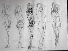 Werner Zimmerman - wonderful line drawing study of the female form