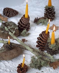 pine cone candle holders Winter Solstice, Pine Cones, Beautiful Hands, Candle Holders, Candles, Christmas Ornaments, Holiday Decor, Crafts, Instagram