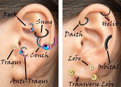 Ear Cartilage Piercings