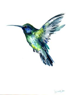 Flying Hummingbird, Original watercolor painting, 12 X 9 in, green blue bird art, bird painting on Etsy, $36.00. Great tattoo idea
